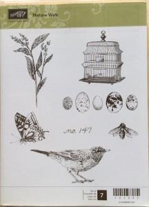 Nature Walk, Bee, Plant, Bird, Birdhouse